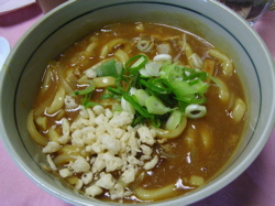 Curry_udon