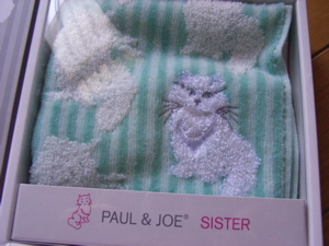 Towel_paul_g
