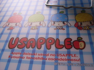 Usa_file