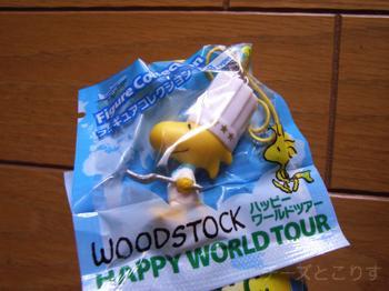 Woodstock_france2